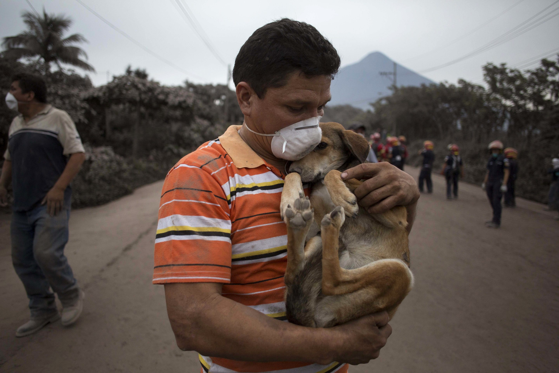 ¿Cómo ayudar ante un desastre ambiental? – @globschool